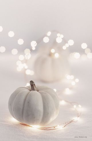 21-charming-white-pumpkin-fall-decorations-for-your-household-homesthetics-decor-14